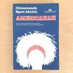 [Vale a pena ler] Americanah